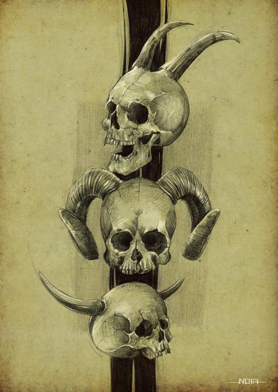 Skull study by noiaillustration