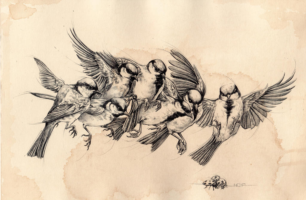 Birds flying away drawing - photo#14