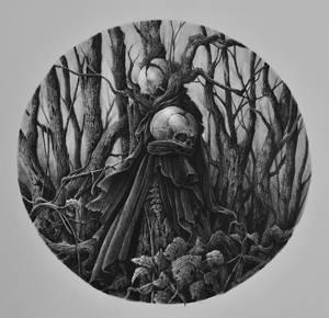 Circulos do inicio - floresta