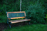 Bench in Nature 1