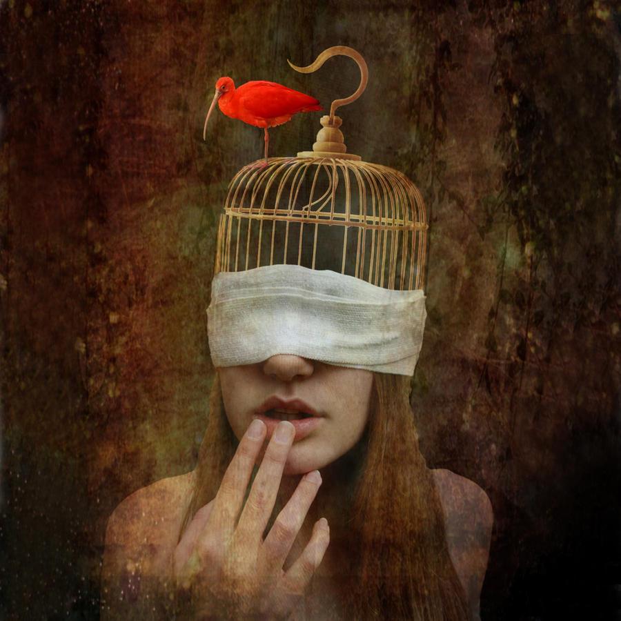 Birdcage sightless by pedroluispalencia
