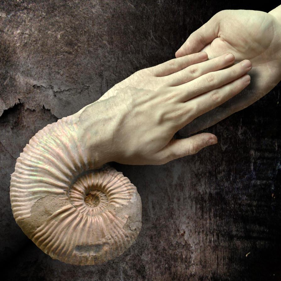Cephalokhiros  hand  manipulation