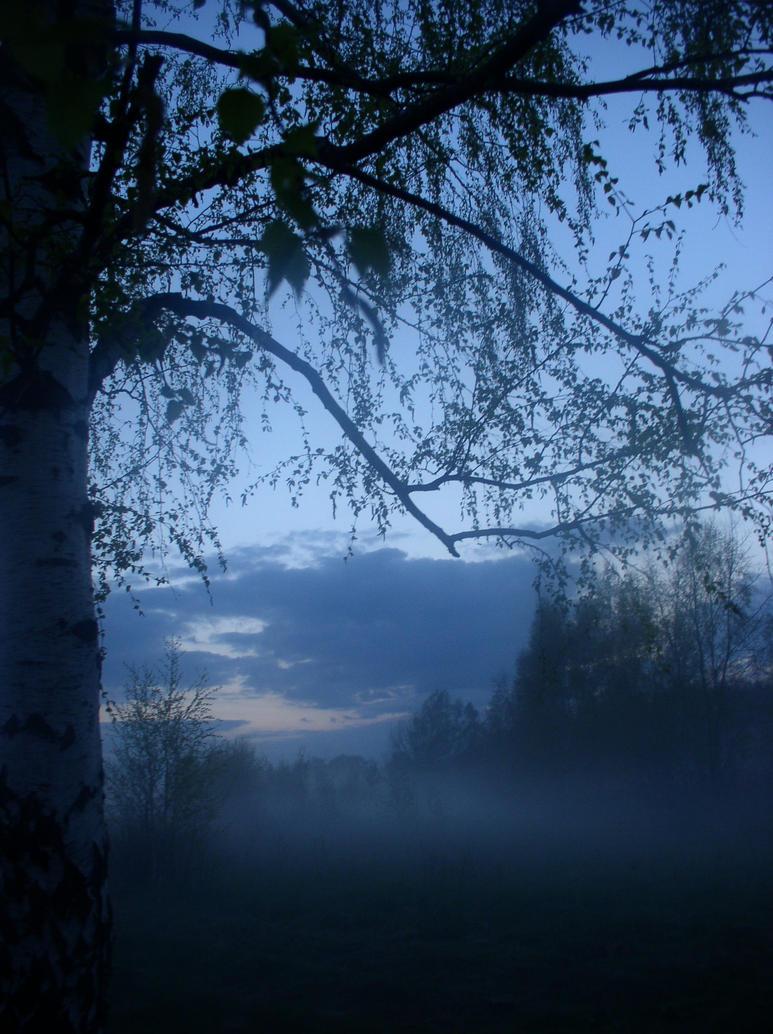 the tree by mestophus