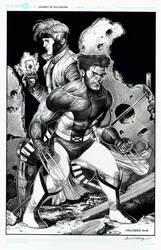 Wolverine  Gambit by danielvaladez