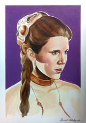 Slave Leia by danielvaladez