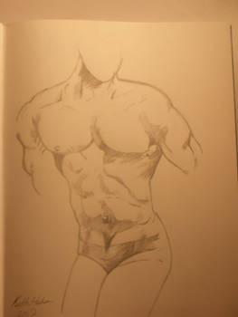 Male Anatomy Drawing 3