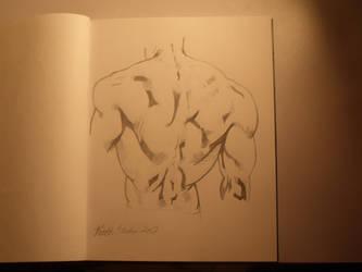 Male Back Anatomy 4