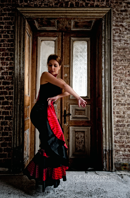 Flamenco _ by nurtanrioven