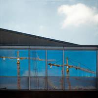 Cranes by Poromaa