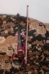My New Violin