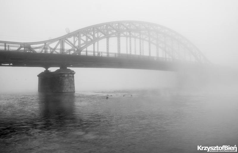 fog by Notmeister