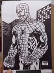 SPIDER MAN - in buildings