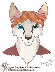 Agent Grey Fox by sumarra