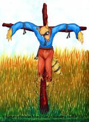 Scarecrow by sumarra