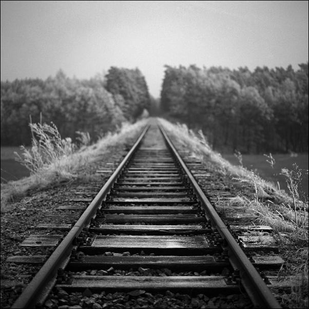 Vanishing Tracks by vvolfmann