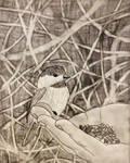 Chickadee Drawing by Zach-Bowie