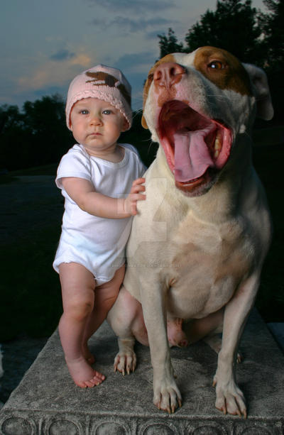 A baby and a Pit Bull by erinsconrad