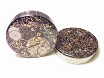 2in 1 PAIR Single Flare Steampunk Tunnels Gauges