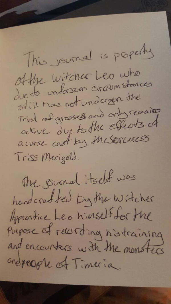 Leo's Journal 2 by Killereria