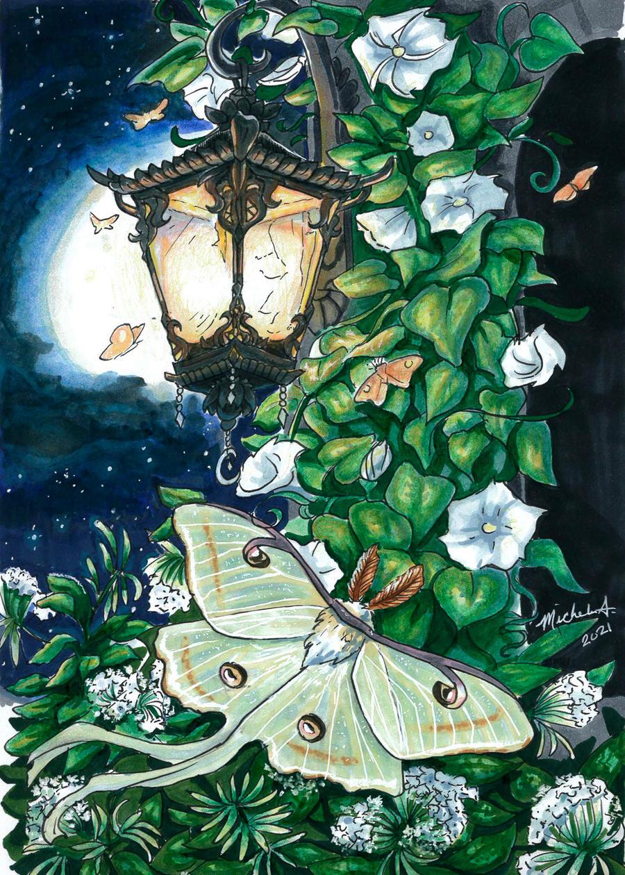 Luna Moth Sketchbook Page