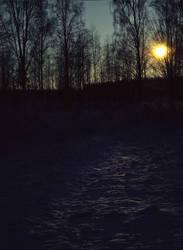 Talvinen pelto by Guineapigrage
