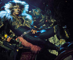 Rum Tum Tugger by Cats-Musical
