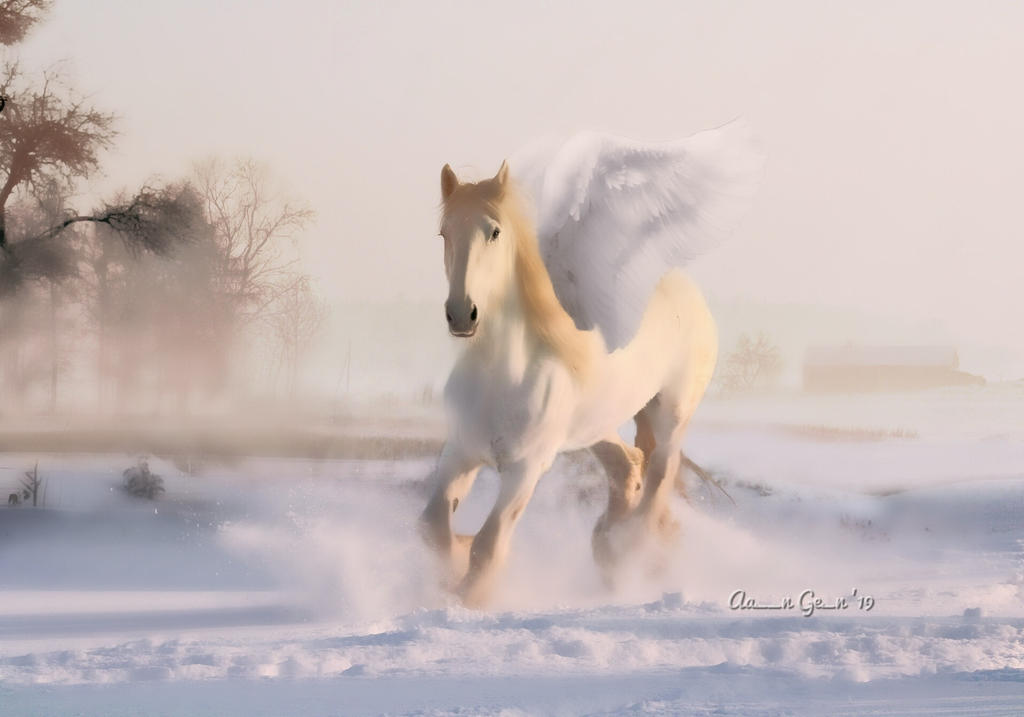 Pegasus, To Take Flight In Winter