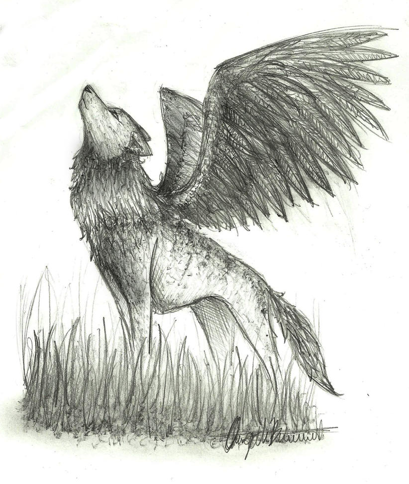 Sketch Winged Wolf By Wolfylittleartist