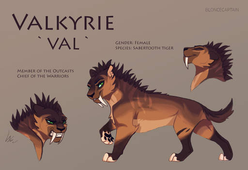 Valkyrie Reference Sheet