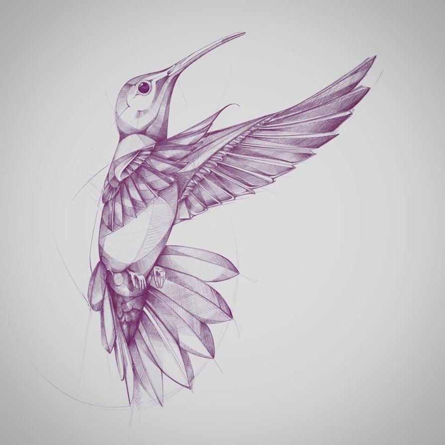 kolibreeee by desan21