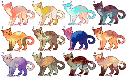 [5/12 OPEN] 300 point Cat Adopts