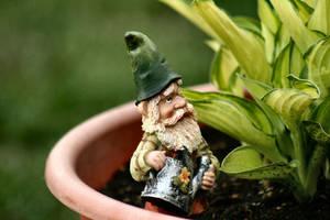 Gnome by JennyJenna