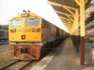 Sunny Train