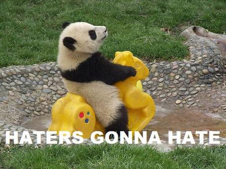 [Image: hater__s_gonna_hate__panda_meme__by_pand...5eznbh.jpg]