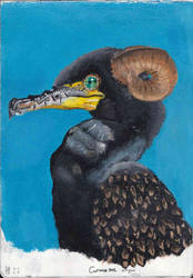 Cormorant Dragon by hans-sniekers-art