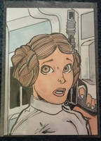 Princess Leia by mzjoe