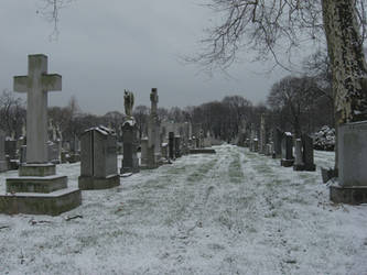 Cemetary Across the Street by SparkletteMachina