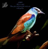 A Roller Bird by GrafArtClub