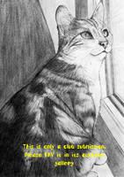 My kitty by GrafArtClub
