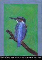 Kingfisher by GrafArtClub