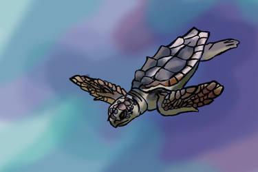 Sea Turtle by MemMor