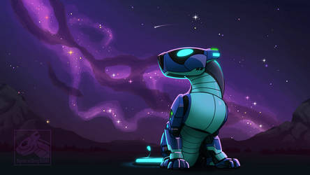 Stargazing space dog