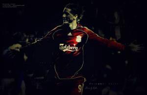 Fernando Torres  .. by desROBIN