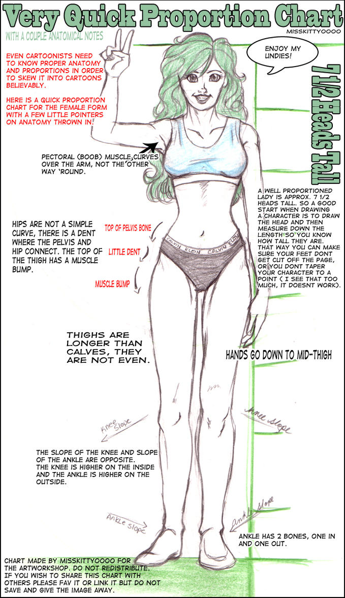Female Proportions by artworkshop