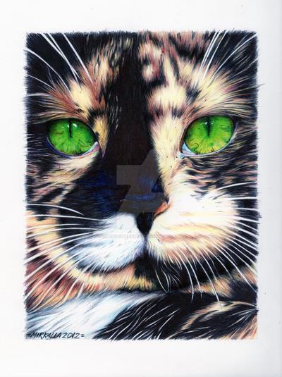 Tortie Cat by ThessaGreenleaf