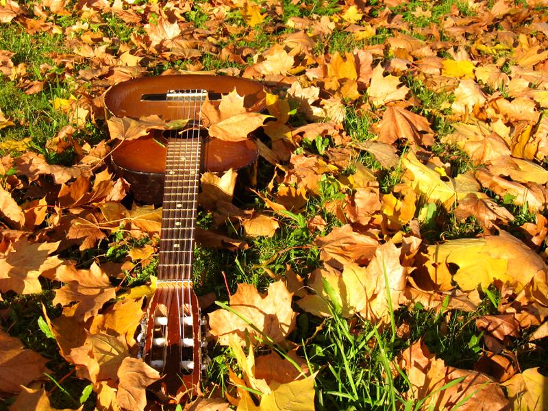 Guitar in leaves.