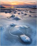 Artic light