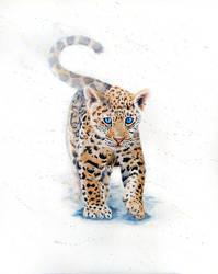 Jaguar cub by RedemptionIas