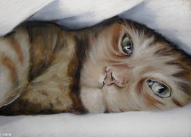 Pastel Cat Nap by BTBArtist
