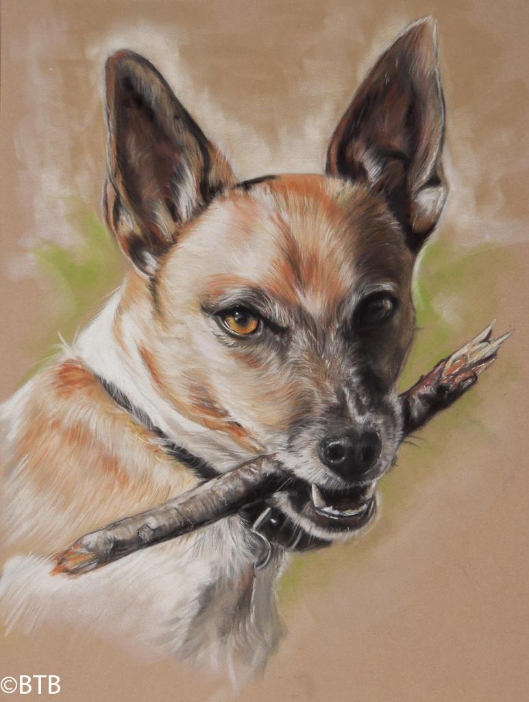 Pastel Buster Dog
